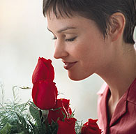 Imagine the smell of roses in your home every month!